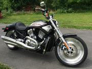 2005 - Harley-davidson V-Rod  VRSCB